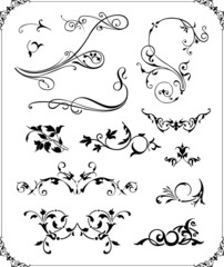 Abstract ornament illustration with floral design elements