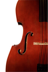 Contrabass-orchestral a musical instrument.