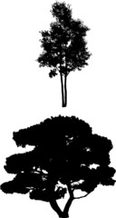 Tree Silhouettes g