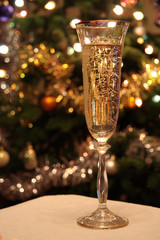 Glass of champagne on a background of a christmas fur-tree