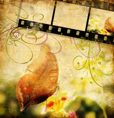 retro background with buttefly and film strip