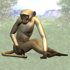 Monkey - Image contains a Clipping Path