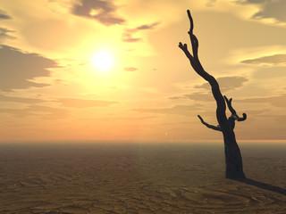 Tree on Horizon