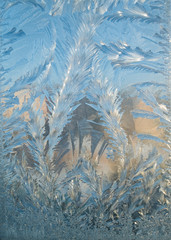 nature background of frozen window ornament