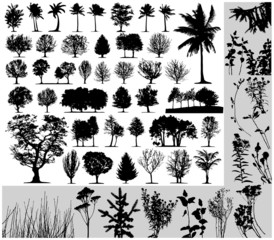 Trees, grass, plant vector on white background