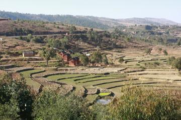 paysage de madagascar