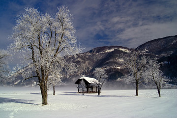 Winter landscape with old barn