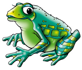 frog big