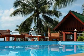 vacances de luxe, piscine et cocotier