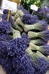 Printed roller blinds Lavender provence mer méditerranée côte d'azur lavande marché