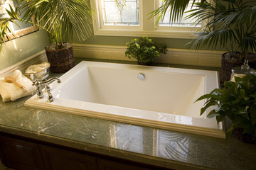 Luxurious bathtub with plants and other decor.