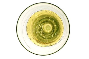 sektglas champagner glas