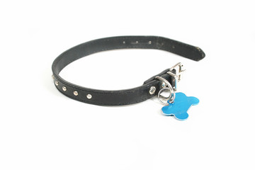 a dog collar with a id tag on it