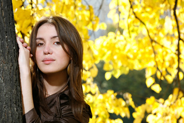 Wall Mural - Beautiful young woman leaning to tree trunk in autumn park.