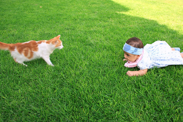 Baby girl and a cat on the grass.
