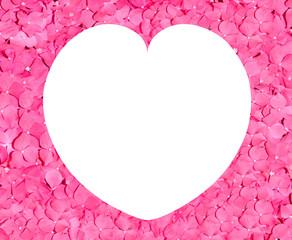 roses petals valentine heart