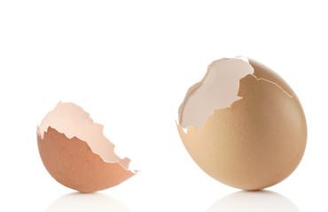 Empty eggshell against white background
