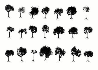 3D Trees.