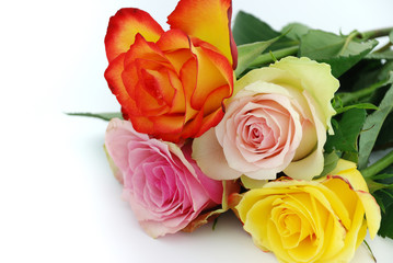 A bouquet of valentine roses on white background.