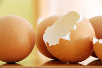 Konzept Eier