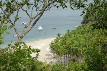 playa isla tortuga
