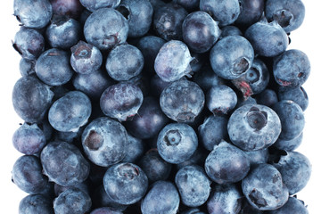 Blueberry fruit group isolated on white background