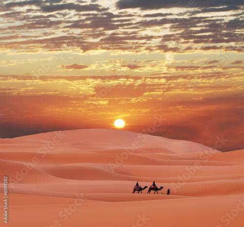 Музыка в пустыне  № 3622219 бесплатно
