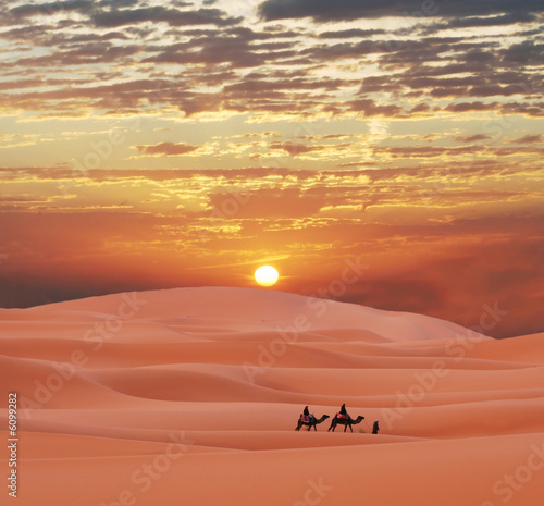 Пустыня дюны барханы караван верблюды без смс