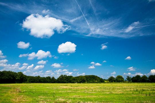 Paysage de campagne avec prairie et foret sur ciel bleu