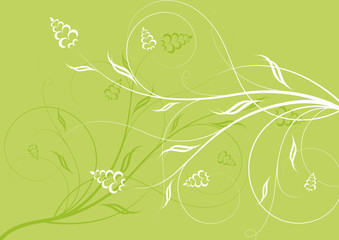Abstract floral background, vector.
