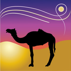 Vector Camel