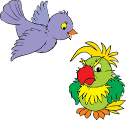 Sparrow and parrot