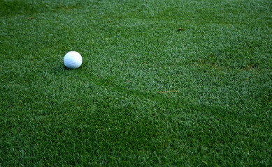 golf ball on dew covered fairway