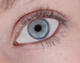 A female blue eye
