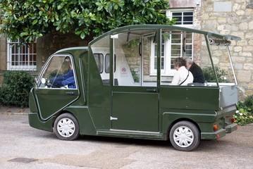 cart. buggy.