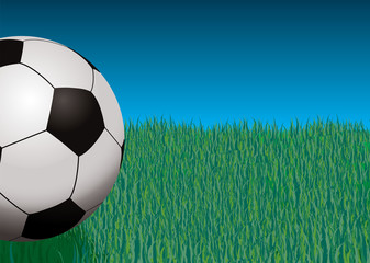 Illustration of a football against some grass and blue sky