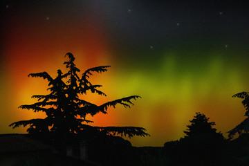 Aurora boreale e silhouette