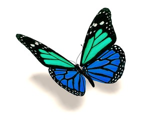 3D turquoise and blue butterfly