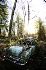 lost and forgotten car
