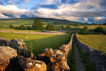 Footpath in Wharfedale, Yorkshire Dales National Park