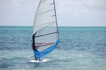 Windsail With Blue Trim