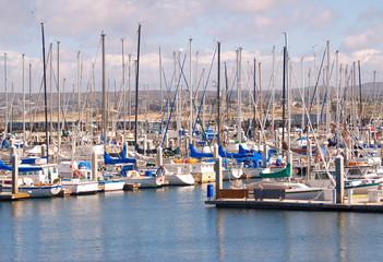 Sailboats lined up in the marina at Monterey, California