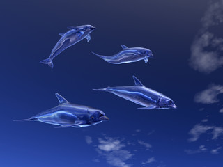 Heavenly dolphins