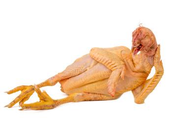 lying nude chicken