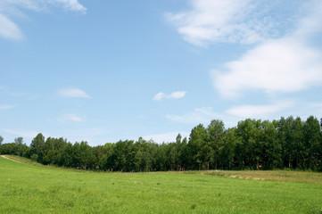 The sky a wood a grass