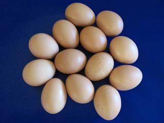 molte uova