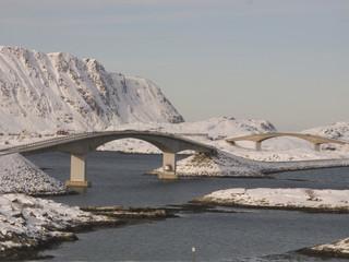 Arctic bridges