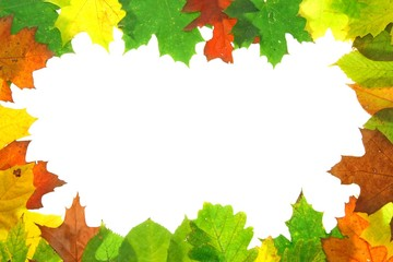 Autumn leaves frame. Can be used for the advertisements