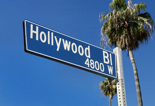Hollywood Blvd Street Sign with Palms