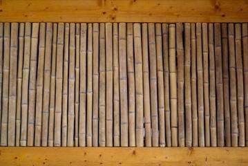 bambous secs
